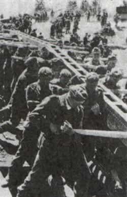 德军渡过顿河向高加索油田进攻