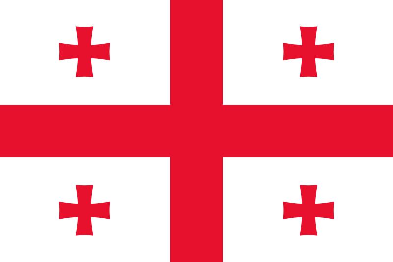我国与格鲁吉亚建交